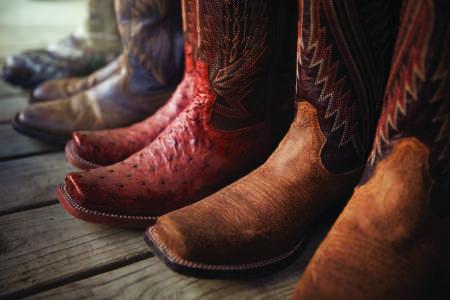 Western Boots in exotischem Leder